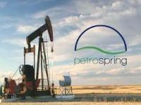 Petro Spring LLC