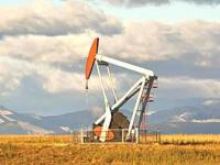 Black Stallion Oil & Gas, Inc.