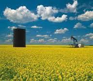 Petro One Energy Corp.-5