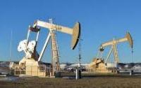 Northern Spirit Resources Inc.