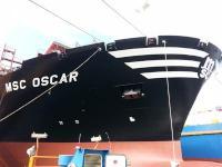 MSC_OSCAR