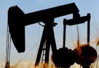 Nitro Petroleum