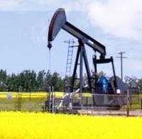 Petroamerica Oil Corp