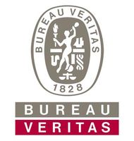 Bureau Veritas focuses on access safety