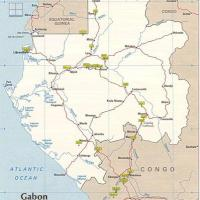 Harvest Natural Resources in Gabon
