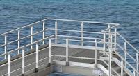 Alphastrut handrail