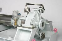Amarinth ISO 5199
