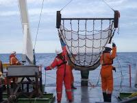 Fugro - 2-metre scientific beam trawl