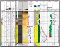 Paradigm - Geolog